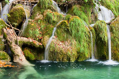 Water Cascade. Beautiful picturesque water cascade flowing over grassy rocks in autumn Stock Images