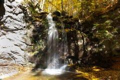 Water cascade. A water cascade colored by autumn season Royalty Free Stock Photos
