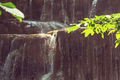 Water cascade. Beautiful Water cascade in the forest Stock Image