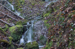 Water2. Water cascade jump in incontaminated nature Stock Photo