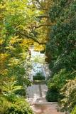 Water cascade in Nikitsky Botanical Garden Royalty Free Stock Images