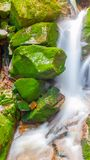 Water cascade of small creek between mossy stones. Long exposure. Water cascade of small creek between mossy stones. Long exposure Royalty Free Stock Images