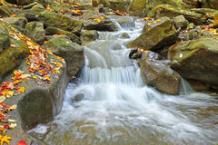 Water cascades on a mountain river Royalty Free Stock Image