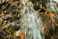 Water cascades on a mountain river with fallen autumn leaves Royalty Free Stock Photo