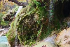 Water Cascading over Moss Covered Rocks. Clear spring water, gently cascading over beautiful green moss covered rocks at Turner Falls Park in Davis, Oklahoma stock images