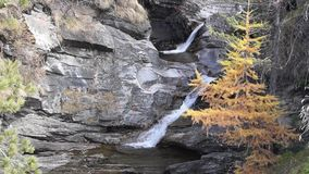 Water cascading over rocks, waterfall and autumn colors in the mountains, yellow and red trees stock video