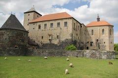 Water castle Svihov stock images