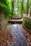 The water channel of the creek in the park Caldes in Monchique, Portugal Stock Images