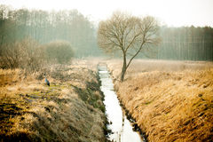The water channel between the fields Stock Image