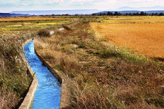 Water channel. Irrigation water channel. Rural landscape wheat fields royalty free stock photos