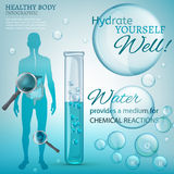 Water Chemical Reactions. Water is the driving force of all nature. Vector illustration of bio infographics with human body organs icons in transparent style Royalty Free Stock Images