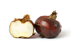 Free Water Chestnut Royalty Free Stock Photography - 25265597