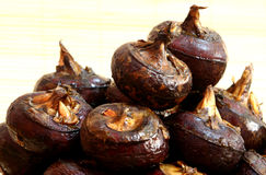 Water Chestnuts. From the local market. Good for cooling body during summer time royalty free stock photo