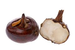 Water Chestnuts. Isolated macro image of water chestnuts stock photos