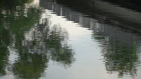 Water circles on the river stock video footage