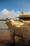 The water city: udaipur Royalty Free Stock Images