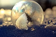 Water, Close Up, Photography, Macro Photography Royalty Free Stock Image