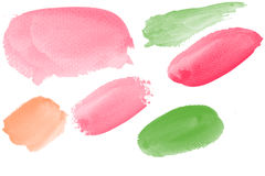 Water color brushes Royalty Free Stock Image