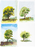 Water color illustration, tree paint. Stock Photography