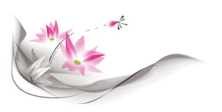 Water color lotus background Royalty Free Stock Images
