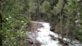 Creek 1 Stock Image