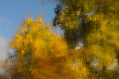 Water-colors of autumn. View on autumn threes trough the window Stock Image