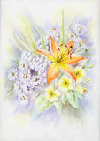 Water-colour, summer bouquet. Drawing a water colour on a paper: summer bouquet with a lily Royalty Free Stock Images