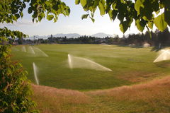 Water Conservation. A recreational field is watered in the early morning to conserve water Stock Photography