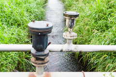 Water control in rice field Stock Images