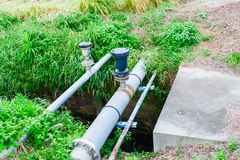 Water control in rice field Stock Photo