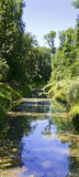 Water course of an alluvial forest Stock Image