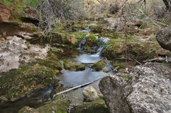 Water course and vegetation Royalty Free Stock Image