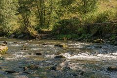 Water creek flowing thru rocks with green trees in the background.  Royalty Free Stock Photo