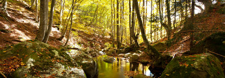 Water creek panorama Royalty Free Stock Image