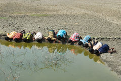 Water crisis in Sundarban-India.