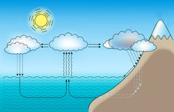 Water cycle. Vector scheme for small and large water cycle Stock Photos