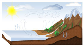 Water cycle. 3d cut landscape Royalty Free Stock Images