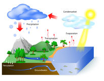Water cycle. Diagram. The sun, which drives the , heats water in oceans and seas. Water evaporates as water vapor into the air. Labeled vector illustration