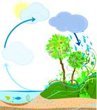 Water cycle Royalty Free Stock Image
