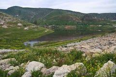 Water dam in Jordan. Eco park in northern Jordan valley Royalty Free Stock Image
