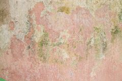 Water damage causing mold growth on the interior walls of a property. royalty free stock photo