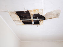 Water damaged ceiling . Royalty Free Stock Images
