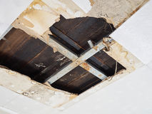 Water damaged ceiling . Stock Image