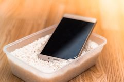 Water damaged phone in rice stock image