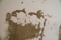 Water damages and mold on the ceiling in the Mamluks on the Temple Mount in Jerusalem. History royalty free stock images