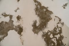 Water damages and mold on the ceiling in the Mamluks on the Temple Mount in Jerusalem. History stock image
