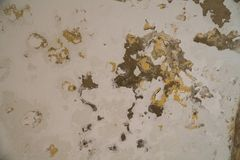 Water damages and mold on the ceiling in the Mamluks on the Temple Mount in Jerusalem. History stock photo