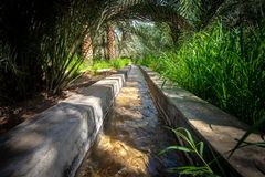 Water dat in een falaj in een zeer groene oase stroomt royalty-vrije stock afbeeldingen