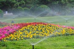 Water de tuin Stock Afbeeldingen