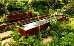 Water in de tuin Royalty-vrije Stock Afbeeldingen